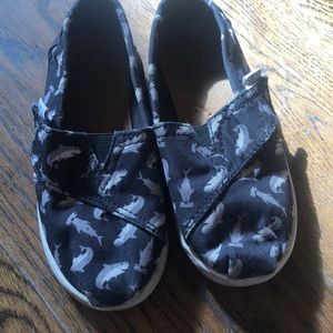 Shark Toddler size 9 Toms